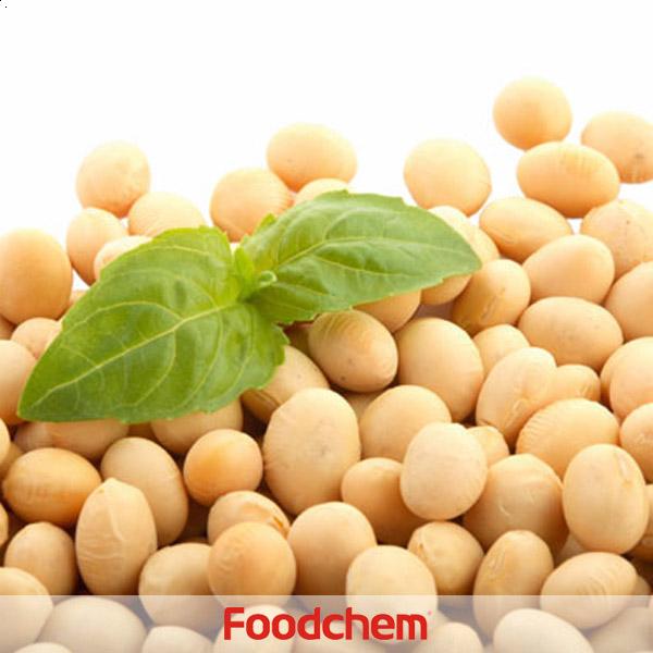 콩단백질(블렌딩)