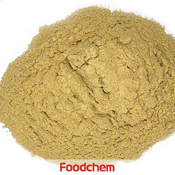 집중완두콩단백질공급업체