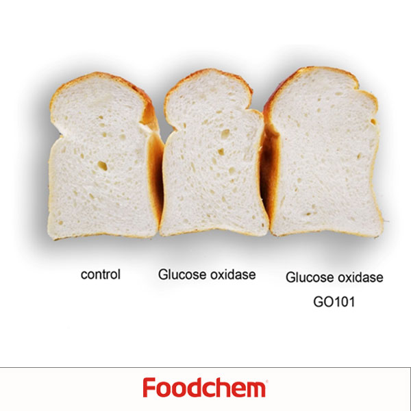 Glucose Oxeidas Suppliers